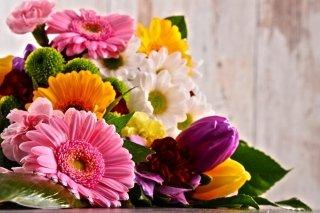 Vendita fiori recisi