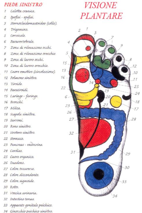 plantare piede sinistro
