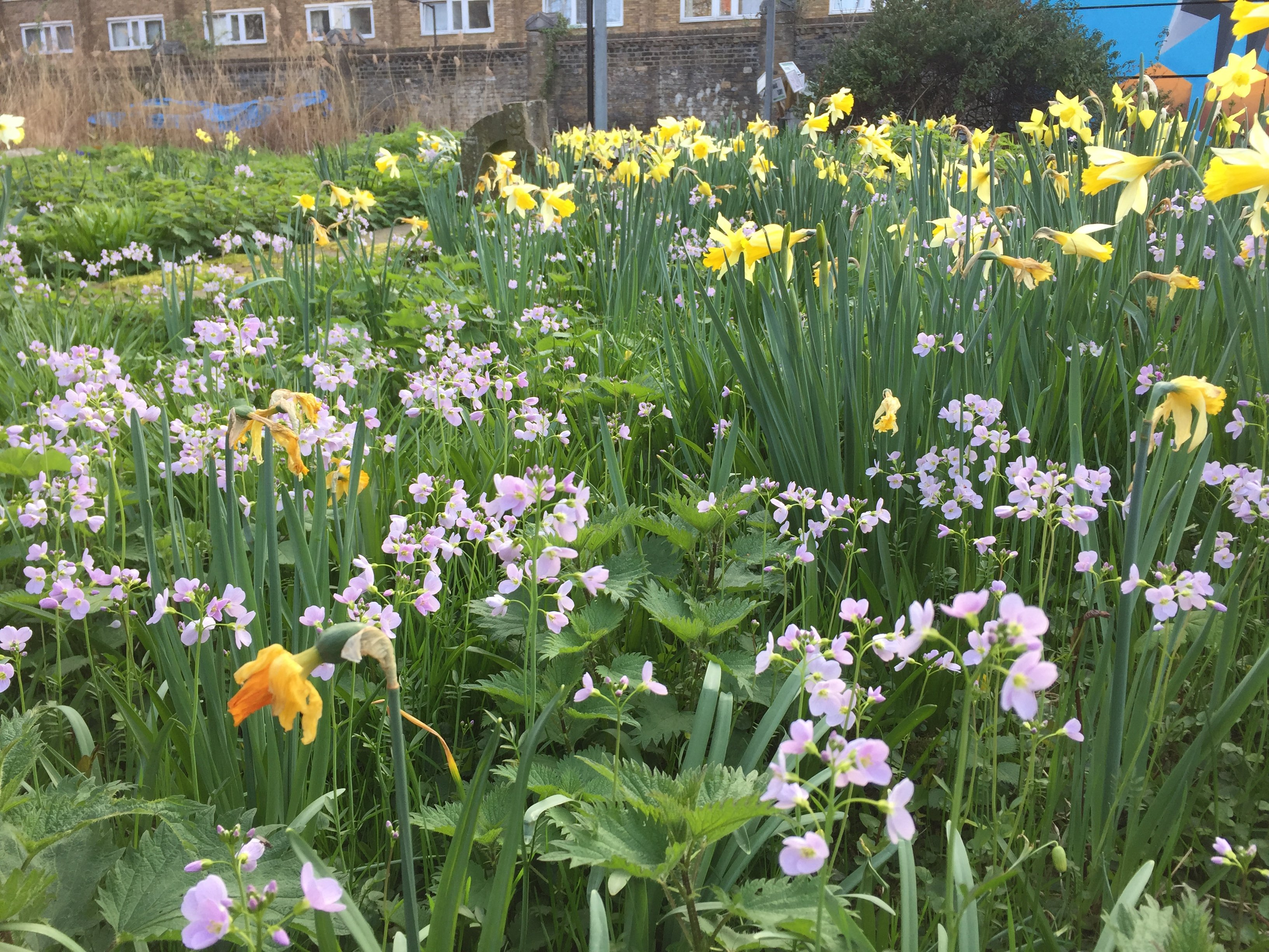 Aprils focus on forage mightylinksfo