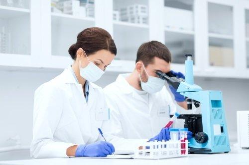 personale durante analisi di chimica chimica
