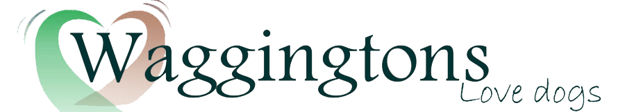 Waggintons - Dog care services, North West London