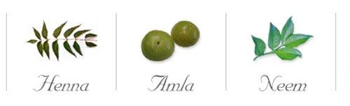 Natural ingredients of Lasonia