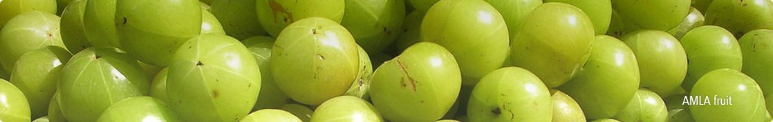 Enhance beauty with Amla fruit extract