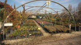 vendita prodotti per piante, vendita prodotti per fiori, vendita all'ingrosso