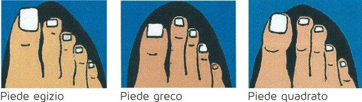 Tipologie di disposizione e forma delle dita dei piedi