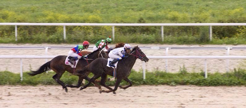 jockeys riding
