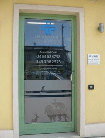 Clinica veterinaria a Verona