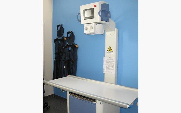 Radiologico digitale veterinario