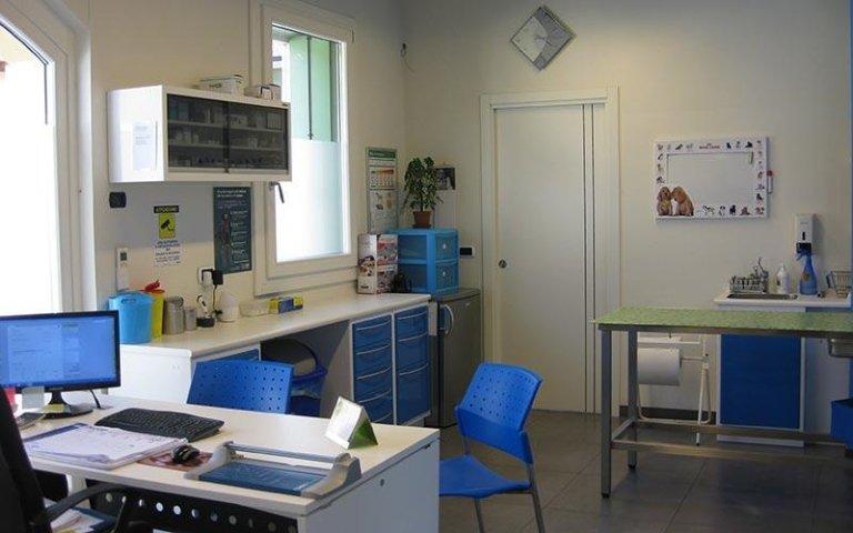 Agopuntura veterinaria Verona