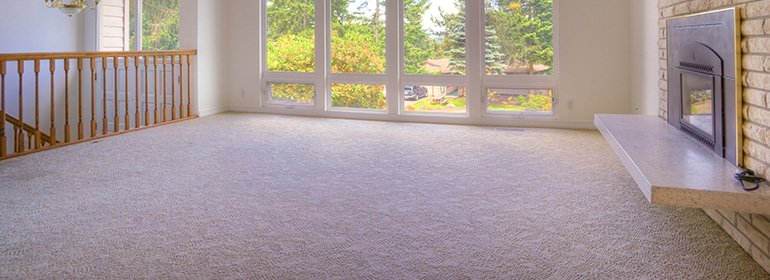 Reliable carpet cleaning service in Adelaide