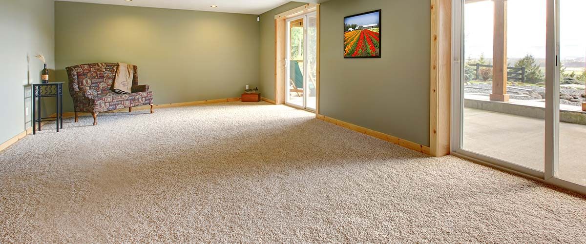 Professional carpet cleaning service in Adelaide