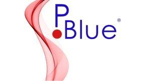 logo P blue