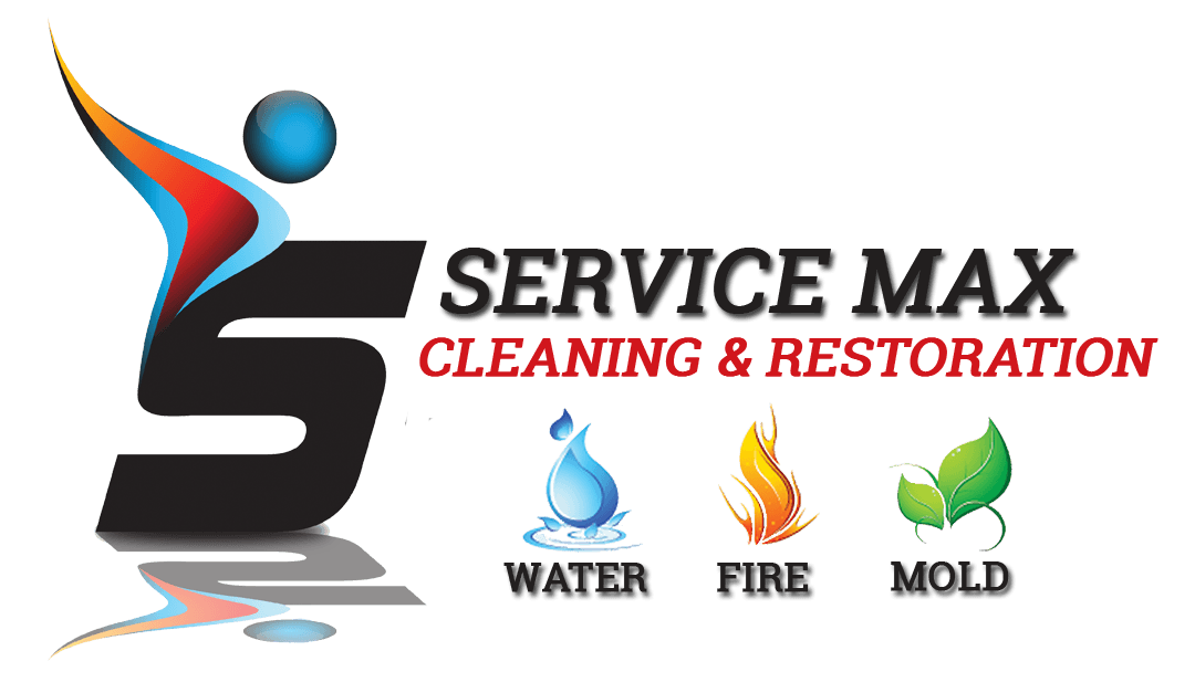 Mold Inspections Mold Removal Amp Remediation South Florida