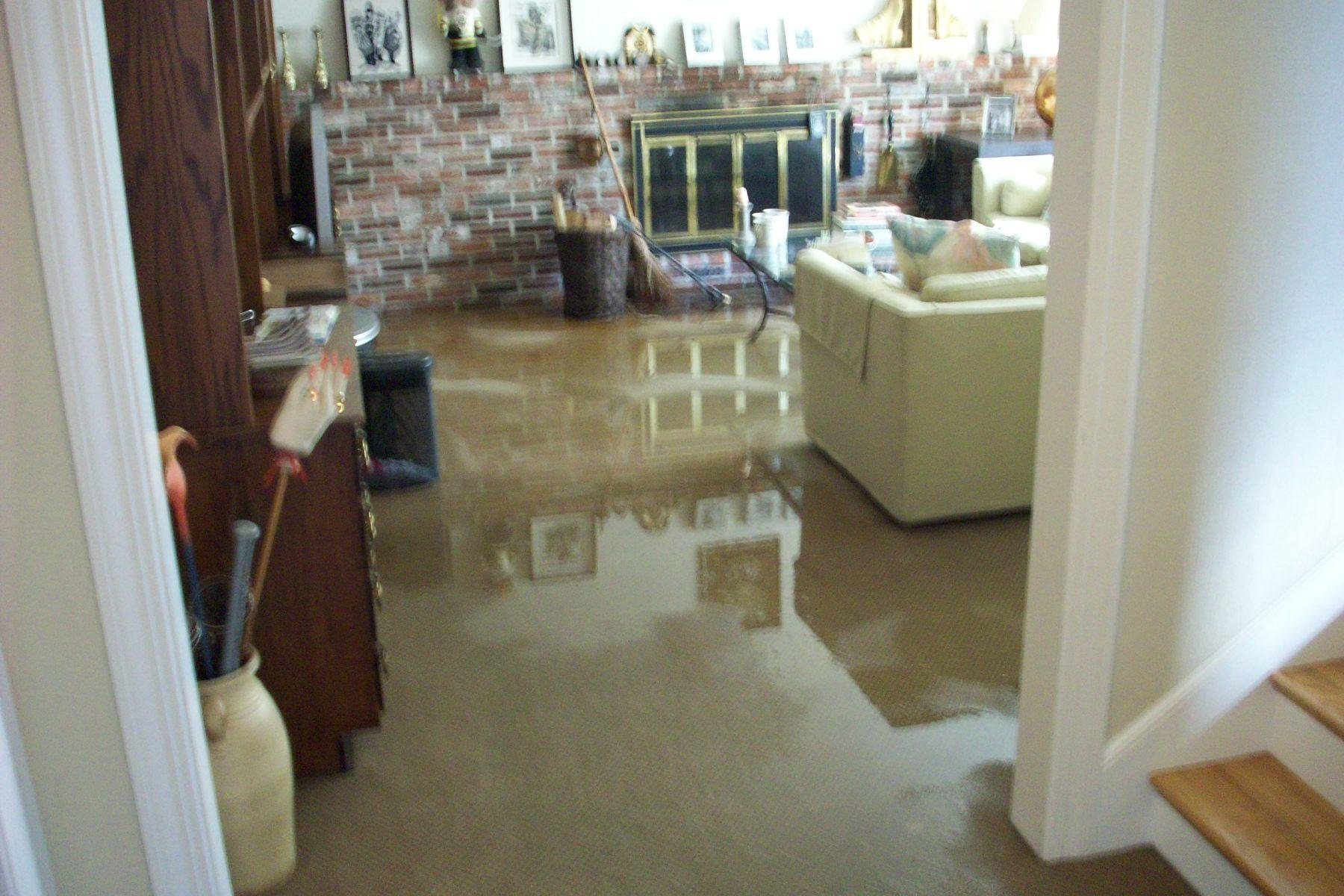 water cleanup Miami,  water damage, water damage and removal