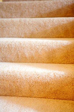 Ccarpet