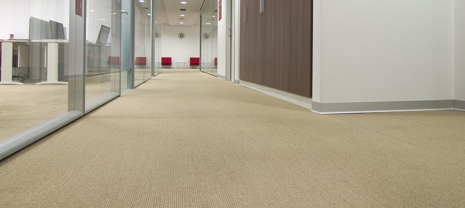 A carpeted office space