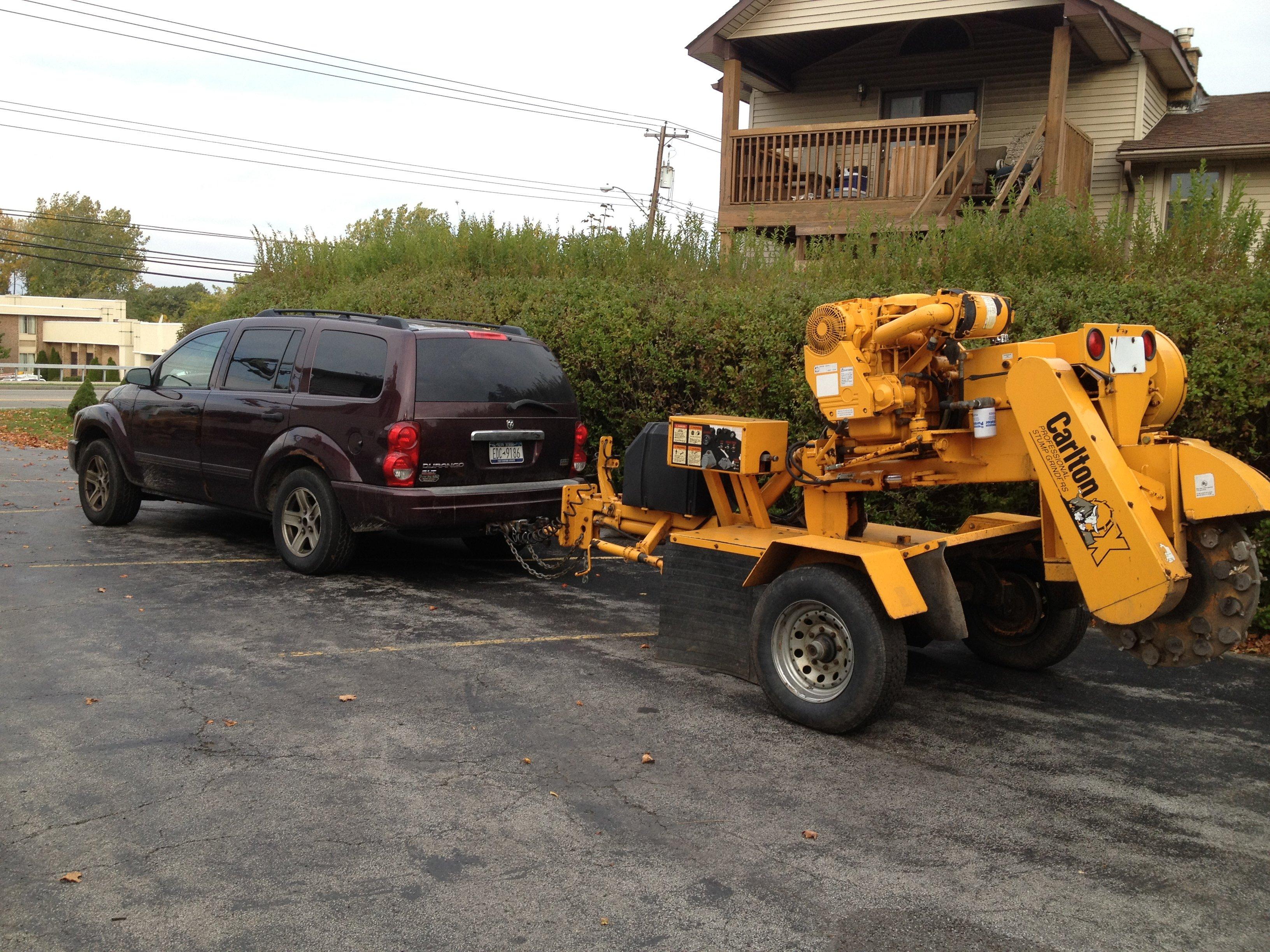 Tree Service Buffalo, NY