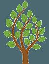 Tree Services Buffalo, NY