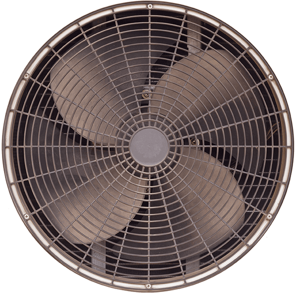 A close up of a fan