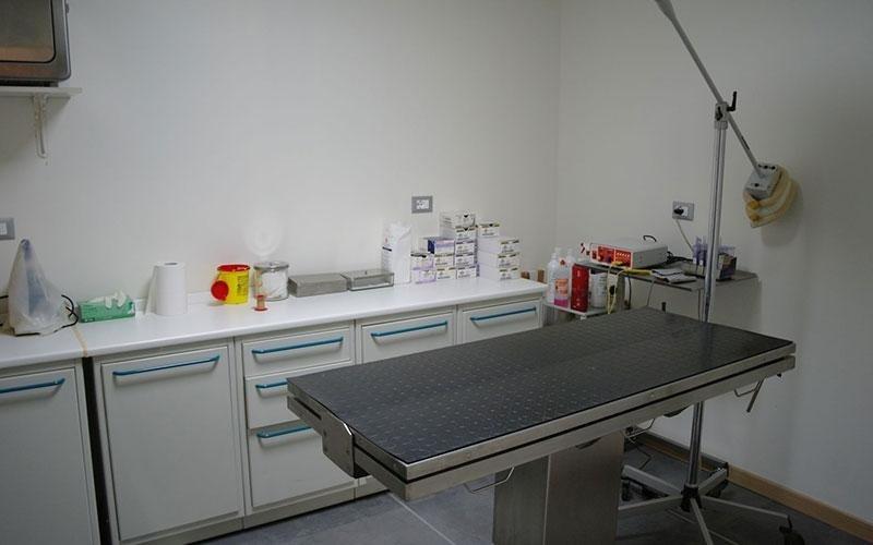 clinica veterinaria croce di gussago