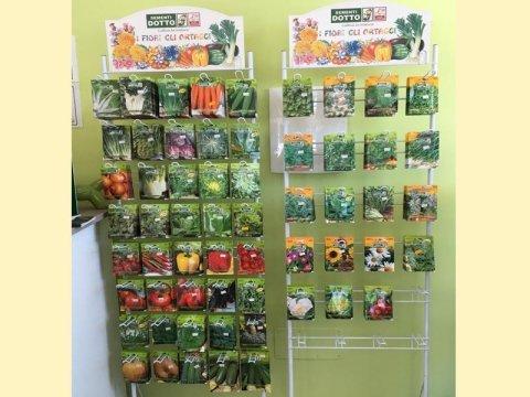 Semi per fiori da vaso e giardino