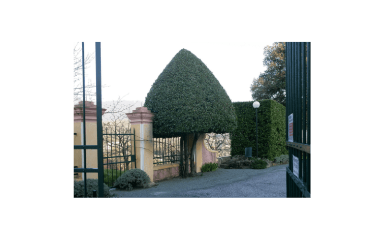giardino struttura anziani