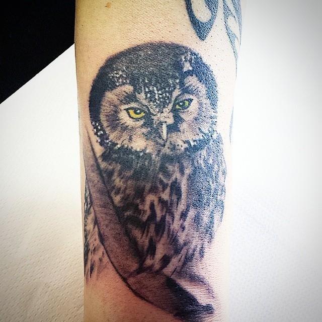 Tatuaggio gufo