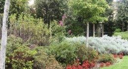 azienda agricola, manutenzione giardini, progettazione giardini