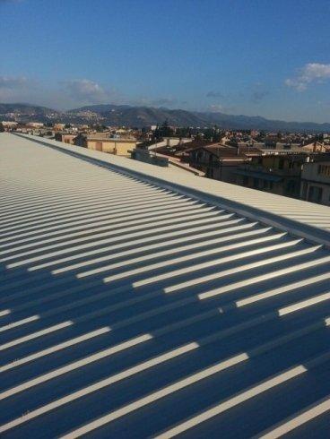 Pulizia per coperture tetti
