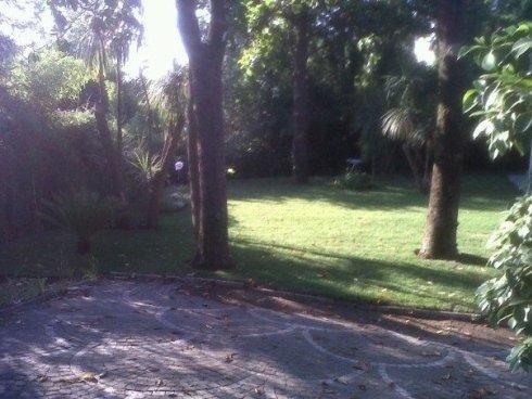 giardino dopo il nostro intervento