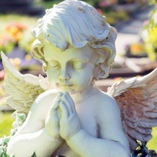 gestione pratiche funerarie