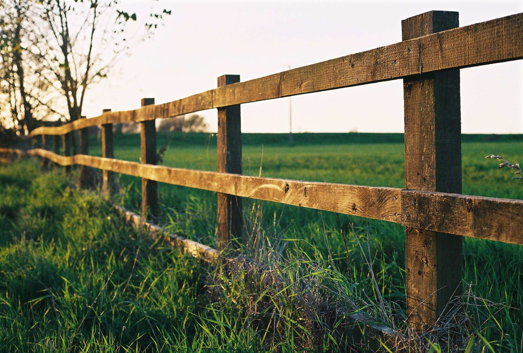 Tips to keep in mind before you install your fence baanklon Gallery