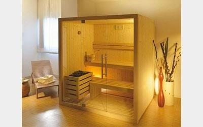 Bio Sauna, Bio Sauna home