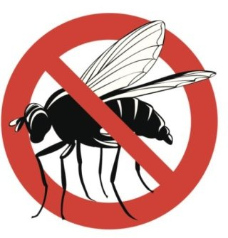 mosche, disinfestazione mosche