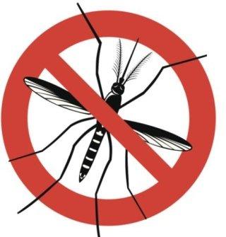 zanzare, disinfestazione zanzare