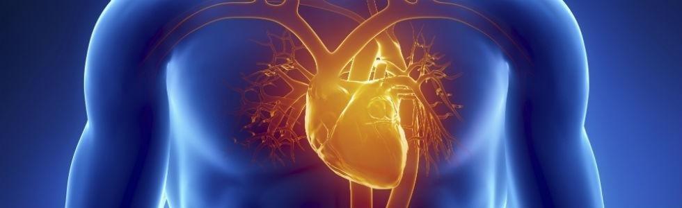 Cardiologia udine