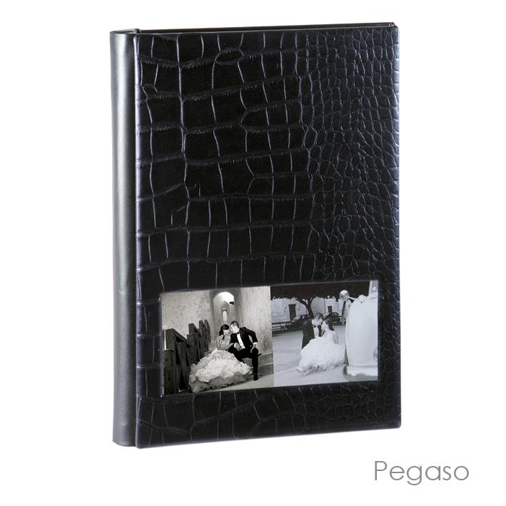 Olimp Album Pegaso Model