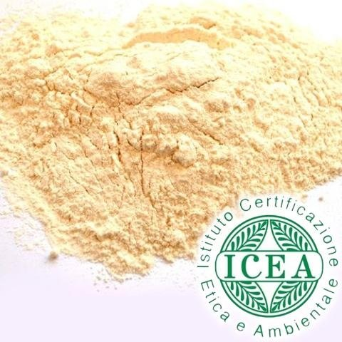 durum wheat flour
