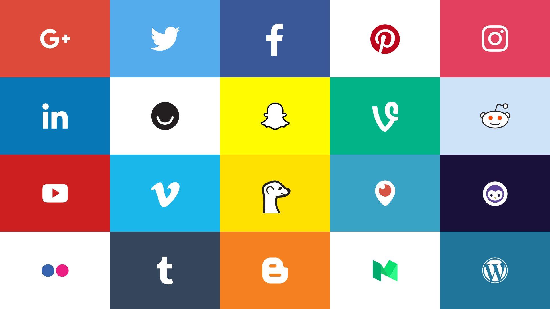 social media plumber