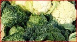 verdura surgelata