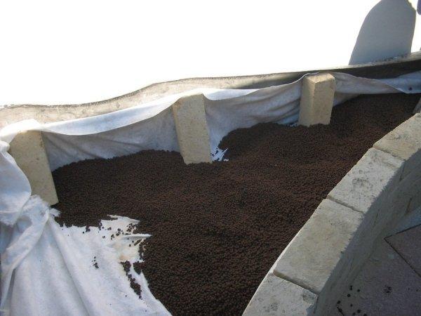 Manutenzione piante da terrazzo