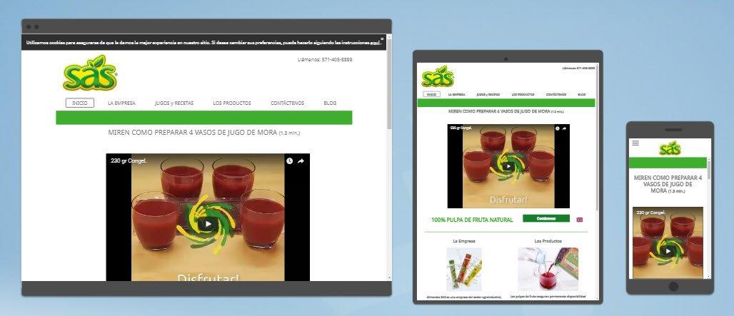 diseño sitios web alimentos sas