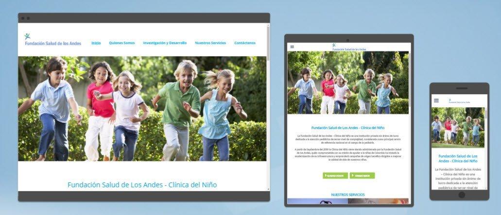 diseño sitios web FSA