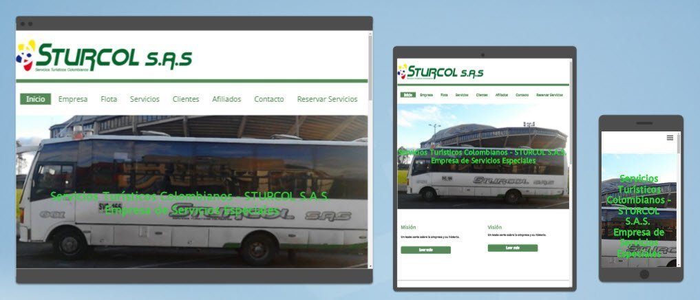 Diseño sitios web Sturcol