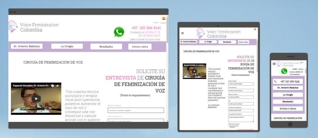 diseño sitios web voicefem