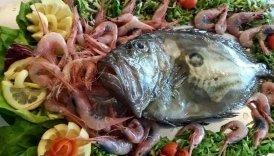 pescato ponza