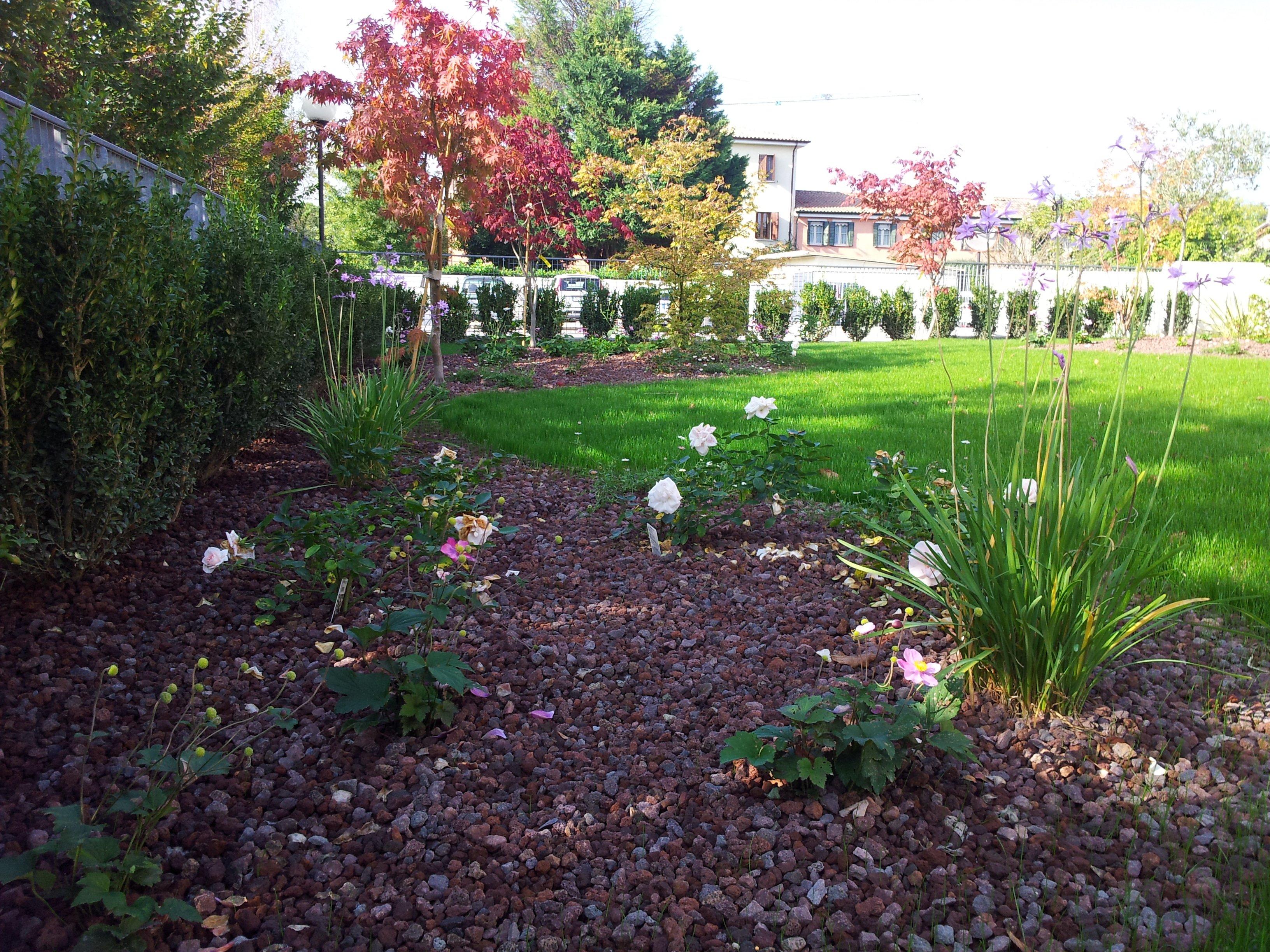realizzazione giardino con fiori