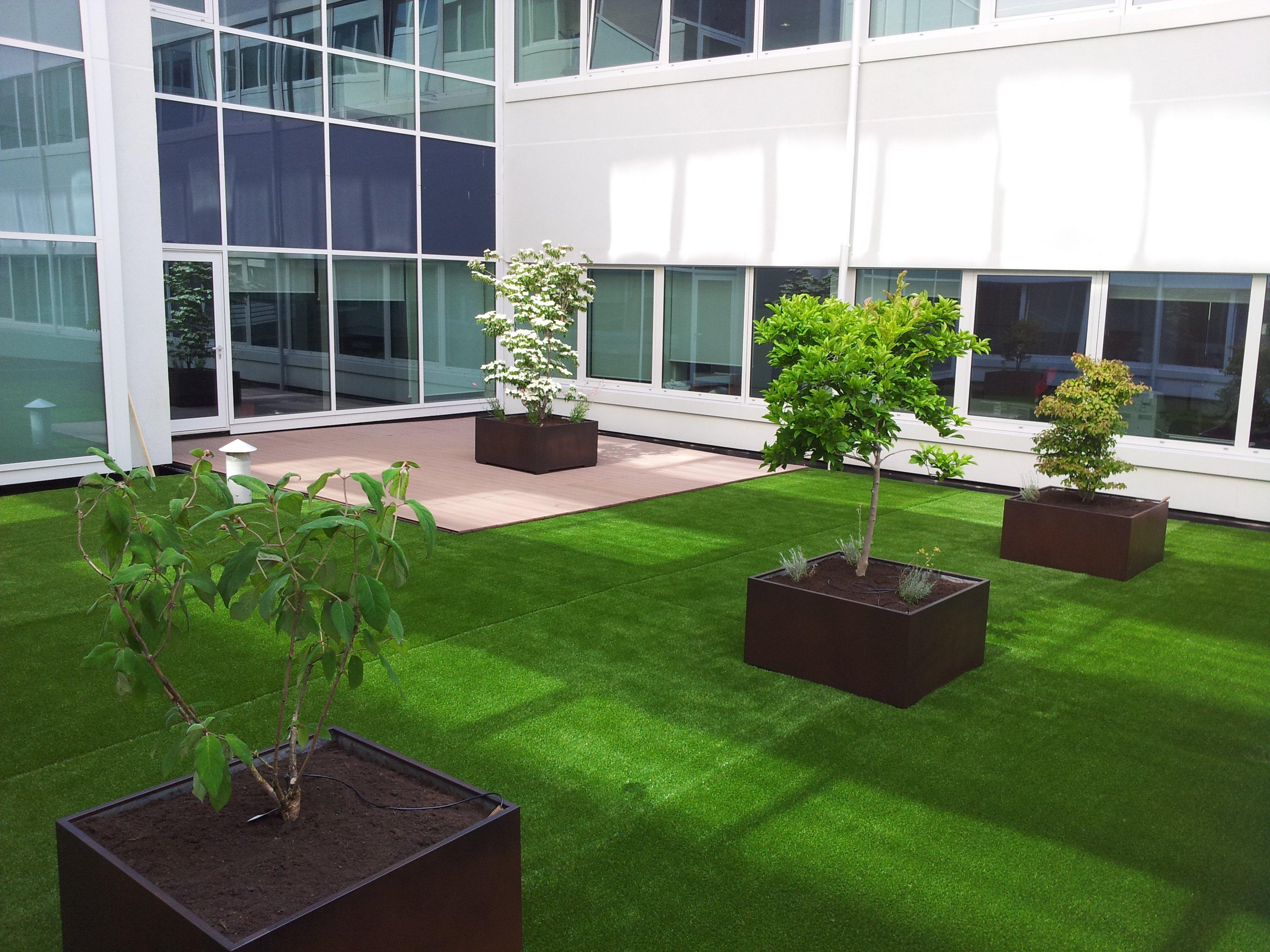 progetto di un giardino in 3d