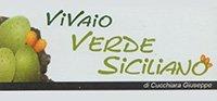Vivaio Verde Siciliano - Logo