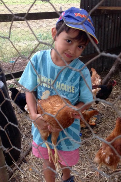 kid with the chickens